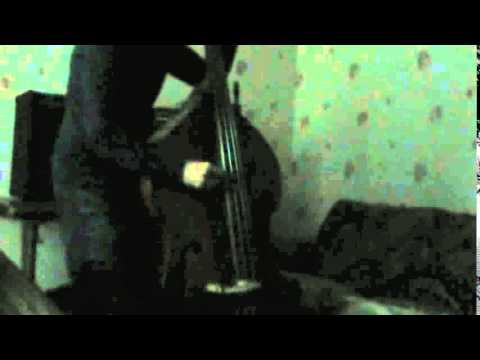 Waking The Cadaver   I Know The Insides Of Women (Upright Bass Cover)