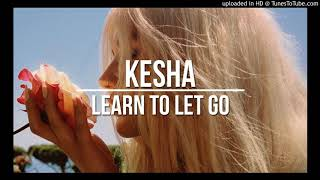 Cover images Kesha – Learn To Let Go (Micheal Brun Remix)