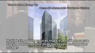 Beyond the Summer 2011 Power Crisis 3/3