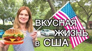 США ФЛОРИДА - ХОРОШО ОТДОХНУЛИ - ЖИЗНЬ В АМЕРИКЕ
