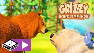 Grizzy en de Lemmings | Een ijsbeer in het bos? | Boomerang