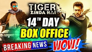 Salman Khan's Tiger Zinda Hai 14th Day Collection | Box Office