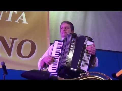 Piazzola sul Brenta fiera di San Martina 11.11.2014 alla fisarmonica Silvano (filmador Renato)