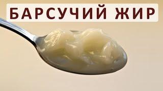 видео Барсучий жир