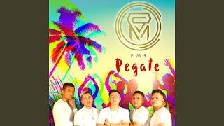 Gambar cover Pegate
