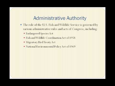 Administrative Law: An Introduction