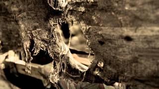 NUBES GRISES (Cortometraje)