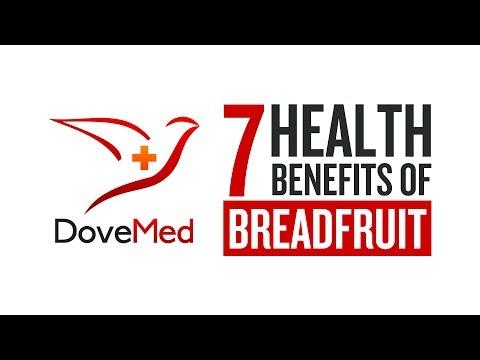 7 Health Benefits Of Breadfruit