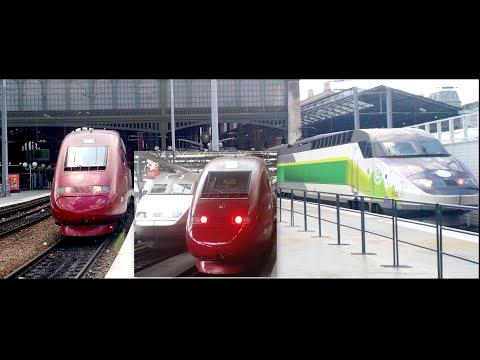 Brussels To Paris By Thalys | 295 kmph | High Speed Train | Europe Diaries