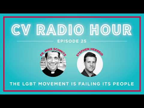 Fr. Mike Schmitz: Is the LGBT Movement Failing its People?