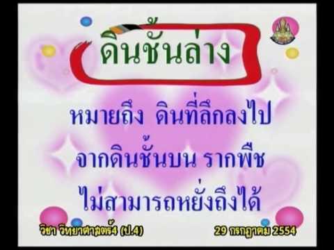 057 540729 P4sci B วิทยาศาสตร์ป 4