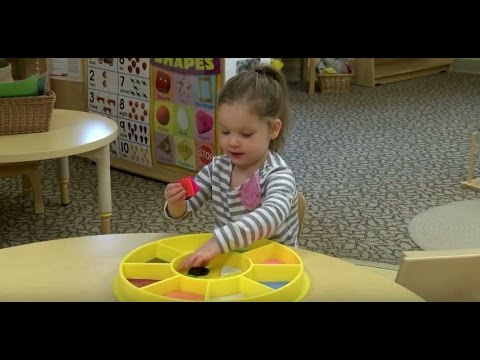 Supporting Mathematical Development In Young Children: Cardinality