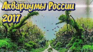 видео Российские аквариумы