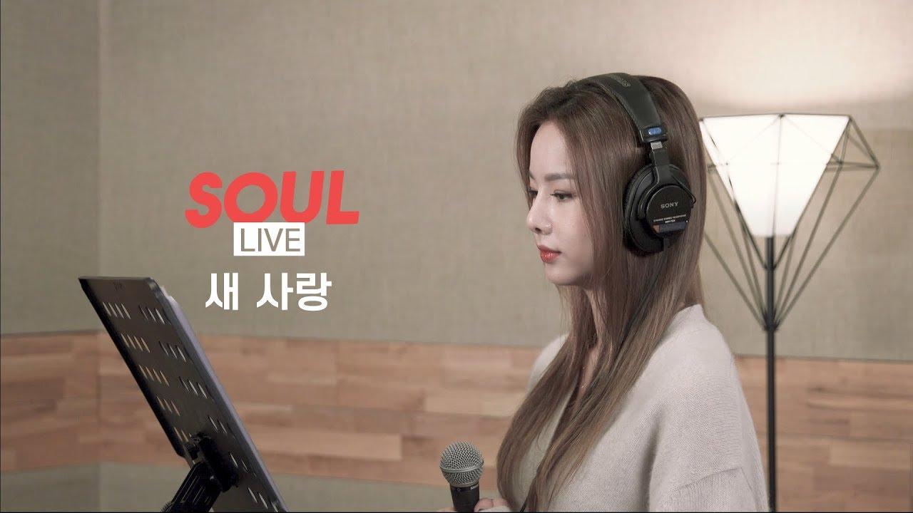 [소울라이브] Cover by Soul_G(솔지) | 송하예(Ha Yea Song) - 새 사랑(Another Love)