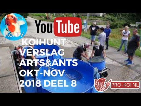 KOI | Koihuntverslag Arts&Ants okt-nov 2018 deel 8