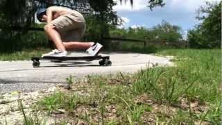 BUSTIN EQ 36 - Longboarding in Gainesville Florida - FreeRide Surf & Skate Shop
