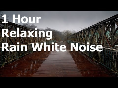 Rain White Noise 1 Hour: Sounds of Nature for Meditation, Deep Sleep, Relaxing Sound, Baby Soothing