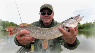 Рыбалка на спиннинг в жару ловля щук моя успешная тактика