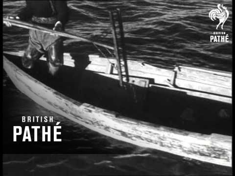 Oyster Fishing (1949)