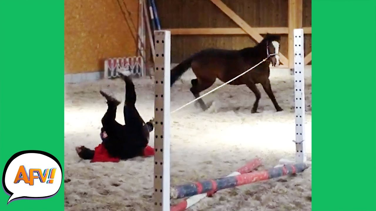 Download The Horse DRAGGED Her FAIL First! 😂   Funny Farm Fails   AFV 2021