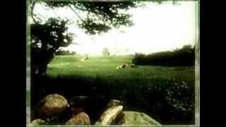 Дмитрий Прянов feat. Emilli - Дорога домой