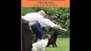 Foundation Gundog Training
