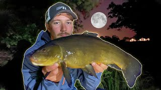 Fishing Small River for Tench & Bream for 48 Hours (Crazy Fishing) | Team Galant