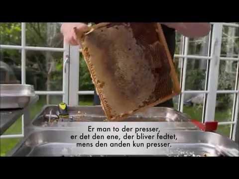 Honning Presning