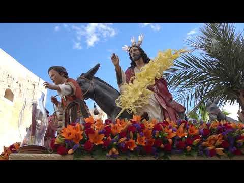 Borriquita 2019 Costaleros Del Amor