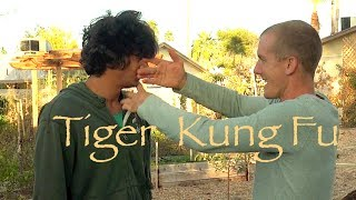 Tiger Kung Fu Combat - Top 10 REAL FIGHTING Moves of Tiger Style!