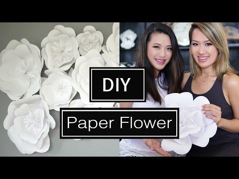 DIY Paper Flower BackDrop | ANN LE & FrmHeadtoToe