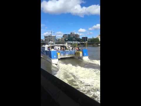 city cat ferry Brisbane