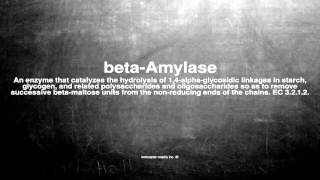 Medical vocabulary: What does beta-Amylase mean