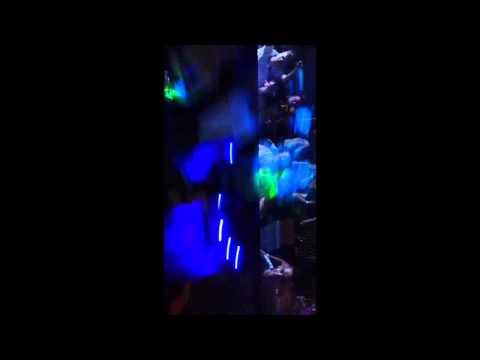 ZODIAC MANSFIELD 2014 DJ KUTSKI MC WHIZZKID
