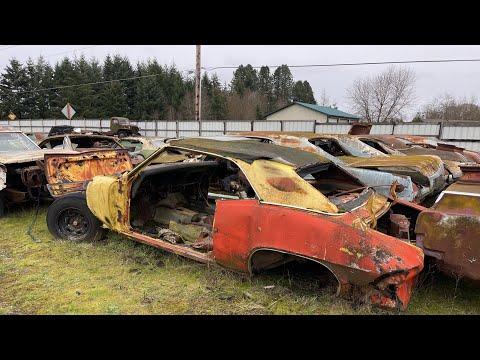 BARN FINDS| Junkyard Full of Old Pontiacs, Novas, Edsels, Cadillacs, and More!!