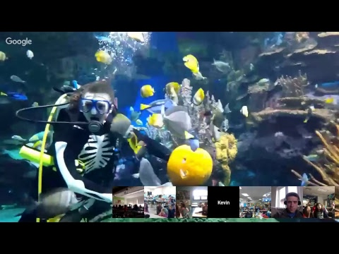 Ripley's Aquarium of Canada: Pumpkin Carving Dive