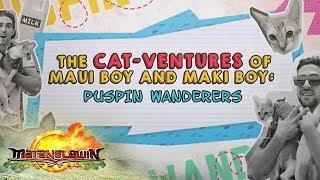 Matanglawin: Cat-Ventures of Maui Boy and Maki Boy