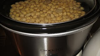 Recipe for Cinnamon Honey Roasted Chickpeas - Embracing Wellness(Embracing Wellness...Mental Health, Diabetes, Recipes, Food Hauls, etc. Sharing my journey... as I learn to change what I can, and embrace what I cannot., 2014-06-30T12:53:15.000Z)