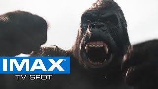 Ready Player One IMAX® Exclusive TV Spot