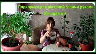 Удобрения для комнатных растений своими руками.(Какую подкормку можно применять для комнатных растений. Уход за комнатными растениями. Чтобы растения..., 2015-12-11T07:24:14.000Z)