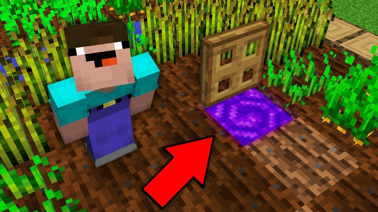 Minecraft NOOB vs PRO: NOOB OPENED TRAPDOOR IN FARM AND FOUND SECRET PORTAL Challenge 100% trolling