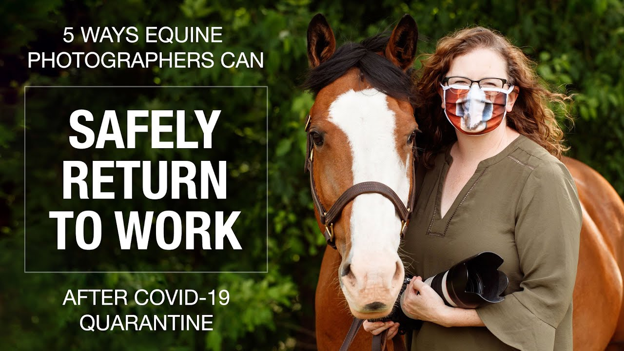 5 Ways Equine Photographers can safely return to work after COVID-19 quarantine.