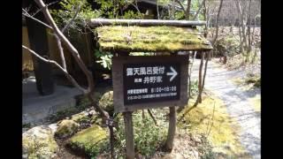 熊本県 黒川温泉 黒川荘 奥の湯(混浴)茶房 猪野家 幽谷の湯 鳩山亭(混浴)