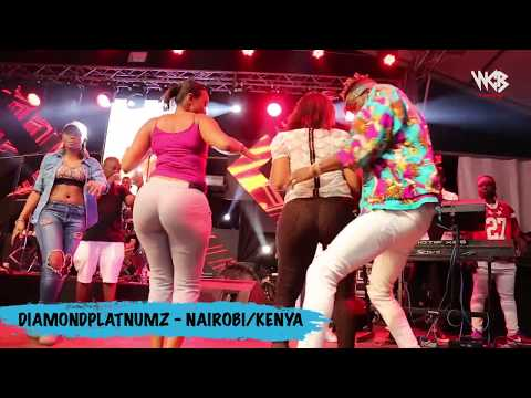 Diamond Platnumz - Live Performance at Koroga Festival / Nai