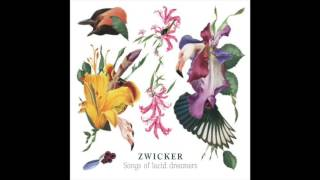 Zwicker - Ping Pong Muses (feat. Valentino Tomasi)