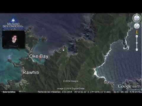 Descubierto un Inmenso Monstruo Marino en Nueva Zelanda
