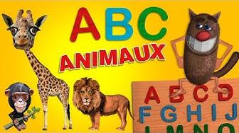Foufou - L'Alphabet Des Animaux pour les enfants (Learn the Alphabet with Animals for kids) 4k