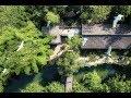 四川一家三口,住30畝森林,保護上萬隻珍貴的鳥兒