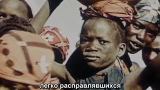 Охота на льва с луком режиссер Ж. Руш