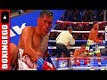 Download NOT EVEN HUMAN! Berchelt v Roman, 2 Mexican Warriors in NONSTOP BALLSY fight Full Fight Chat | EGO